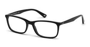 Web Eyewear WE5202 001