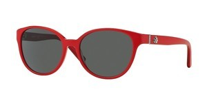 DKNY DY4117M 363487 GREYTOP RED ON TRANSP RED