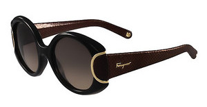 Salvatore Ferragamo SF811SL SIGNATURE 960